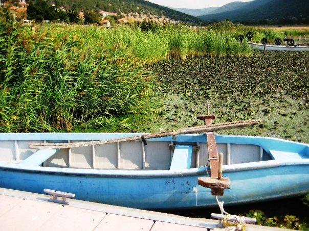 Lake Prespa.JPG